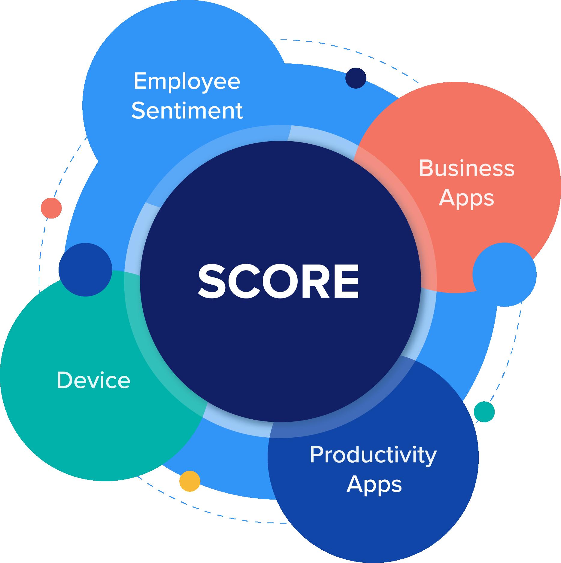 Digital Experience Score
